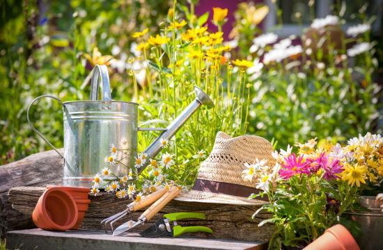 Forårsrengøring i haven: Sådan skal du gøre