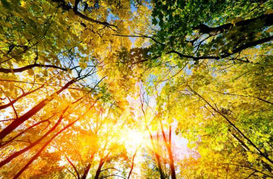 Sommeren er på vej: 20 grader i april